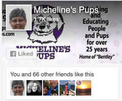 Michelines Pups FB